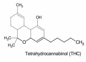 cannabis drug testing-THC