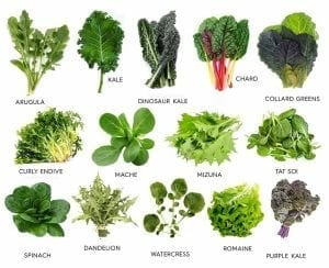cancer fighting foods leafy greens
